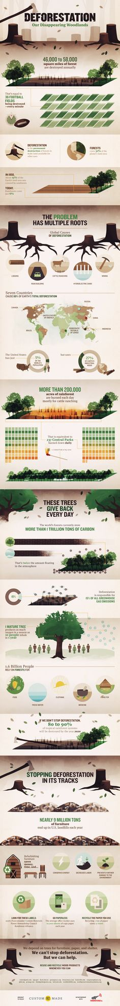 Deforestation. Not just the problem, but a few solutions.