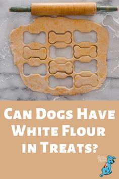 There are a lot of human foods dogs can and can't eat. Trying to make healthy homemade dog treats can often be a challenge when you aren't sure what is good for your dog. Check out our post Can Dogs Have White Flour in Treats? to learn what flours you should use when making treats for your dog. Diy Dog Treats, Homemade Dog Treats, Dog Treat Recipes, Healthy Dog Treats, Dog Food Recipes, Dog Snacks, Challenge, Foods, Canning