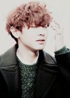 EXO | Chanyeol | Bright & Soft | Green | Fab
