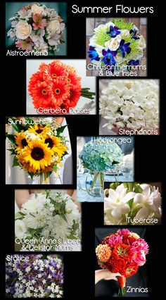 Wedding Flowers | A Seasonal Guide with Photos |