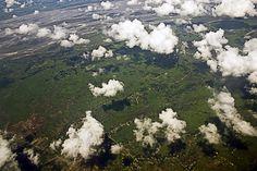 Assam Landscape