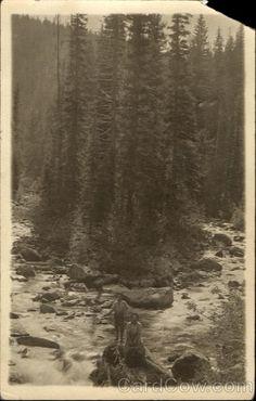 Emmett, Idaho  State: Idaho (ID)  Type: Real Photo  Postmark/Cancel: 1907 Nov-14  Emmett, Idaho
