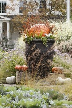 Autumn Garden, Autumn Home, Autumn Girl, Fall Containers, Pots, Fall Planters, Autumn Decorating, Fall Harvest, Harvest Farm