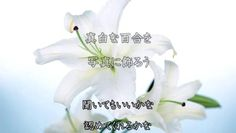 http://www.dailymotion.com/video/x12w1e7_誕生日には真白な百合を-Ⅱ_music
