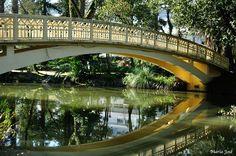 Ponte no Parque Infante D. Pedro, Aveiro