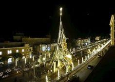 Christmas Trees around the World 09