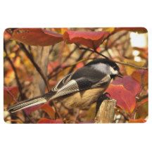 Chickadee Bird with Pink Red Autumn Leaves Floor Mat