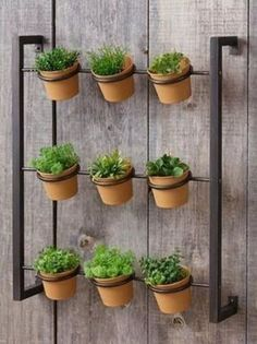Youngsters Area Home Furnishings Wall Mounted Herb Planter Herb Planters, Planter Pots, Dogwood Trees, Succulent Wall, Farmhouse Style Decorating, Medicinal Herbs, Plant Wall, Antique Farmhouse, Kraut