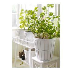 KALASACache-pot, blanc,24 cm  10,90 €  Ikea