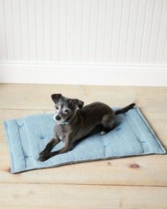 Como hacer un cojin transportable para mascotas
