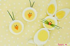 Hard-Boiled Egg Chicks & Bunnies ~ a cute way to use up those extra Easter eggs!   FiveHeartHome.com