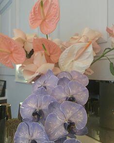 Belle Plante, Bloom Baby, Bouquet, Plants Are Friends, Flower Aesthetic, Flowers Nature, Planting Flowers, Floral Arrangements, Orchids