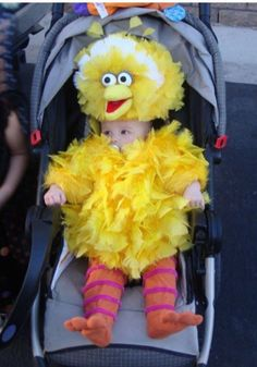 We know which candidate stands for THIS Big Bird. The pro-life one.