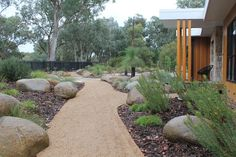 Permeable surfaces around the garden and landscape help hydrate the soil and reduce damaging stormwater runoff entering our waterways. This granitic sand path edged in steel looks great and ticks all those boxes Designed and constructed by Vegetable Garden Design, Garden Soil, Garden Path, Outdoor Landscaping, Outdoor Gardens, Modern Landscaping, Landscaping Ideas, Small Front Gardens, Australian Native Garden