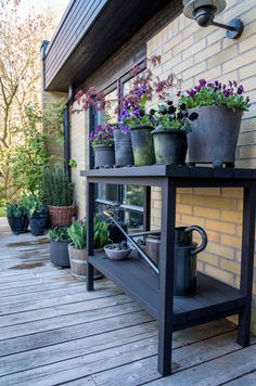 If it's backyard landscaping ideas on a budget, then we got you covered. Constructing or even re-doing your backyard doesn't really need you to blow your budget. Back Gardens, Outdoor Gardens, Small Backyard Landscaping, Low Maintenance Garden, Garden Seating, Garden Cottage, Garden Inspiration, Garden Design, Patio