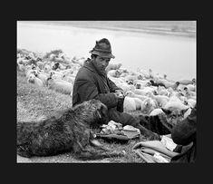 Elio Ciol: lungo il Brenta nei pressi di Chioggia 1959