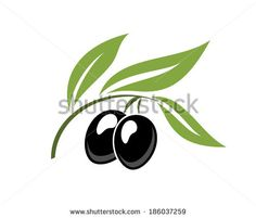 Find olives stock images in HD and millions of other royalty-free stock photos, illustrations and vectors in the Shutterstock collection. Logo Design Tutorial, Design Tutorials, Design Vector, Vector Art, Olive Tree Tattoos, Olive Oil Packaging, Italian Pattern, Calf Tattoo, Paper Cutting