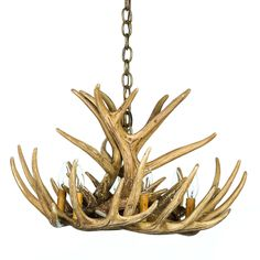 The Whitetail Deer 9 Antler Cascade Chandelier brings just the right touch of outdoor to any room. This chandelier give off that perfect illumination. Deer Antler Chandelier, Antler Lights, Rustic Chandelier, Rectangle Chandelier, Globe Chandelier, Chandeliers, Wagon Wheel Chandelier, Deer Antlers, Deer Heads