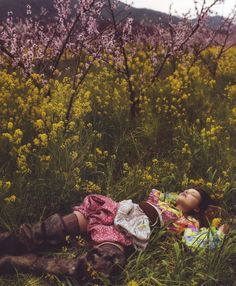 field nap #wildflower
