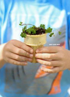 Ice Cream Cone Seedling Garden #earthday #earthdaycrafts #seedlings #icecreamcone #gardenideas