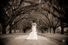 One of my favorite bridal portrait shoots is outside w/ oak trees. There are many places to choose from in New Orleans for this!
