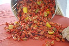 I love crawfish - I need to go back to the south.