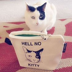 """Show your sass with the """"Hell No Kitty"""" handy pouch."""
