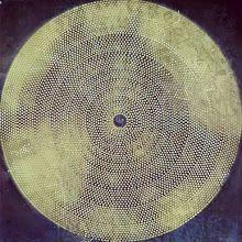Infinity Visualized    Arranged Diatom   Erwin Keustermans     Bacteria art
