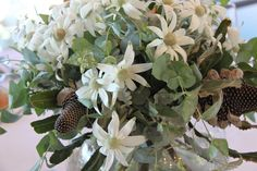 Flannel flowers and gum leaves - a soft white and sage green native bouquet