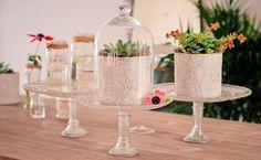 Cadeau original et pas cher pour vos invités mariage : des succulentes
