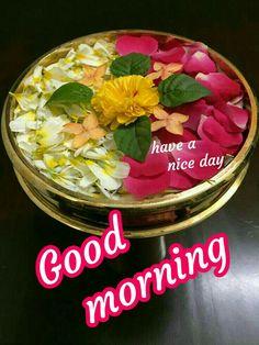 Good Morning Clips, Good Morning Happy Saturday, Good Morning Kisses, Good Morning Friends Quotes, Good Morning World, Good Morning Greetings, Morning Msg, Morning Thoughts, Morning Quotes