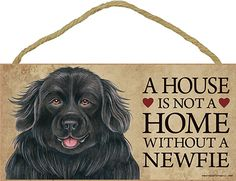 Beagle Wood Dog Sign Wall Plaque 5 x 10 + Bonus Coaster - Boxer And Baby, Boxer Love, Basset Hound Dog, Beagle Dog, Dachshund Dog, Cream Dachshund, Dachshund Quotes, Dachshund Gifts, Rottweiler Dog