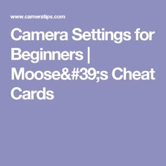 Camera Settings for Beginners | Moose's Cheat Cards