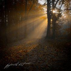 Morning Light by Matthias Gaberthüel, via Morning Light, Country Roads, Celestial, Sunset, Photography, Outdoor, Outdoors, Photograph, Fotografie