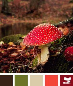Choix de Bastien  Brun foncé = lit  blanc-gris = meubles  vert et blanc-gris= murs  rouge et orangé= accent de couleur  mushroomed autumn