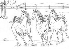 Cool Collection of Horse Coloring Pages. Please welcome, there is a collection of horse coloring pictures on this page. You can print and the color as you like. Farm Animal Coloring Pages, Cat Coloring Page, Coloring Pages For Girls, Cartoon Coloring Pages, Mandala Coloring Pages, Coloring Pages To Print, Free Printable Coloring Pages, Coloring Book Pages, Coloring For Kids