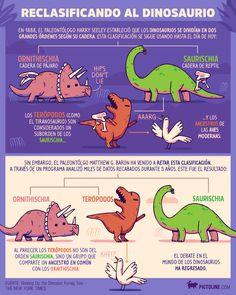 Nueva propuesta de reclasificación de los dinosaurios
