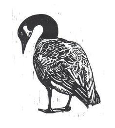Canadian Goose Woodcut