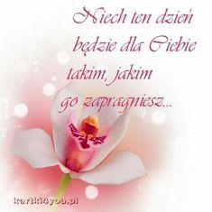 Good Night, Good Morning, Google, Quotes, Picture Polish, Nighty Night, Buen Dia, Quotations, Bonjour