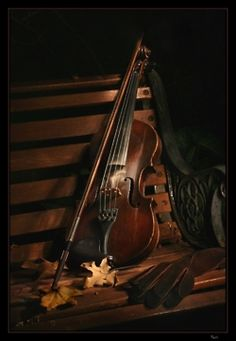 Violin music is the sweetest