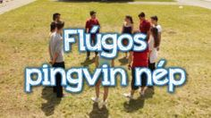 flugos-pingvin-nep Education, Games, Math Resources, Plays, Gaming, Educational Illustrations, Learning, Game, Toys