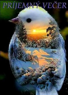 Cute Cartoon Pictures, Art Pictures, Free To Use Images, Photo Composition, Graphic Design Software, Beautiful Nature Wallpaper, Heart Wallpaper, Birds Eye View, Photo Effects