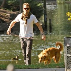 Ryan Reynolds and his dog Baxter