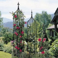 beautiful garden trellis