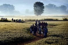 Syrian refugees and migrants walk in a field to cross the border between Greece and Former Yugoslav Republic of Macedonia. Photograph: Aris Messinis/AFP/Getty Images