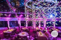 Image result for event photographers dc