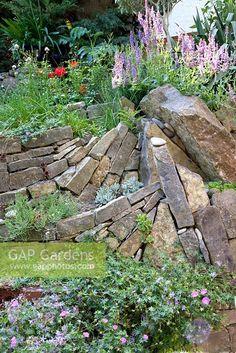 GAP Gardens - Drystone wall and raised borders - Image No: 0202032 - Photo by Elke Borkowski