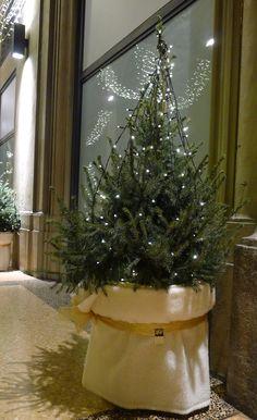 In portico Zambeccari un Natale caldo ed accogliente.  Tutte le foto su Facebook: https://www.facebook.com/media/set/?set=a.934802049943227.1073741873.586169004806535&type=3