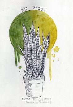 A Espada de São Jorge - Ilustração em Aquarela / 2016 Iodce - Iêda Carvalho