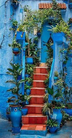 Chefchaouen, Morocco Red tiles on front patio/walkway. Stairway To Heaven, Stairways, Belle Photo, Interior And Exterior, Interior Stairs, Mexican Interior Design, Exterior Tiles, Green Interior Design, Wall Exterior